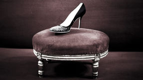 Classic Shoe. A classic woman designer footwear on a foot couch Stock Images