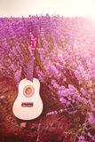 Classic small guitar laid on a lavender field row under the sunrise rays Royalty Free Stock Photo