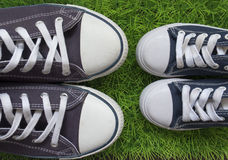 Classic sneakers on the green grass Stock Image