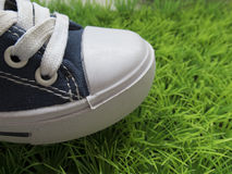 Classic sneakers on the green lawn Stock Photography