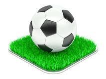 Classic soccer ball on grass section Stock Photos