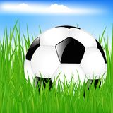 Classic Soccer Ball In Grass. Vector Royalty Free Stock Photo