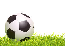 Classic Soccer Ball Royalty Free Stock Image