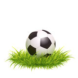 Classic Soccer Ball. Vector Photo Realistic Illustration Of Classic Soccer Ball In The Green Grass. Close Up View Royalty Free Stock Photography
