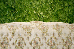 Classic sofa with green fern background Stock Images