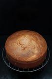 Classic Sponge Cake. Sweet cake isolated on dark background Stock Photo