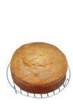 Classic Sponge Cake. Sweet cake isolated on white Royalty Free Stock Photography