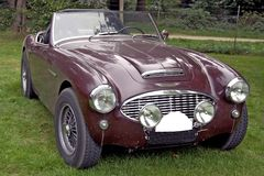 Classic sports car. Plum colored open top classic Austin-Healey 3000 standing outside stock photography