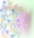 Classic spring  card with butterflies and flowers . Vector print. Beautiful  pastel pattern, delicate  green    background. Use for greeting card, birthday card Stock Images