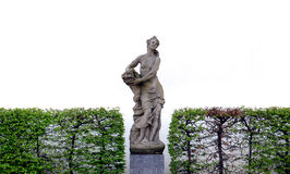 Classic statue and bushes on white Royalty Free Stock Photo