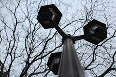 Classic street lamp. Old street lamps raising towards the sky. Tree branches background royalty free stock photo
