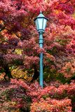 Classic street lamp in autumn park. Stock Image