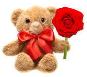Classic teddy bear with red bow Stock Images