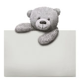 Classic teddy bear toy with paper card template Stock Image