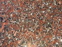 Classic texture of granite. Mineral composition of rock are quartz, plagioclase, potassium feldspar and biotite mica Stock Images