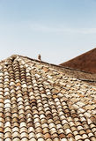The classic tiles of the roofs of noto, sicily Royalty Free Stock Images