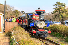 Classic train at EcoLand in Jeju island Royalty Free Stock Images
