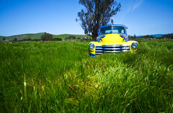 Classic truck in beautiful meadow Royalty Free Stock Images