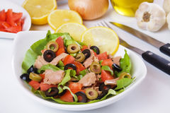 Classic tuna salad Royalty Free Stock Photography