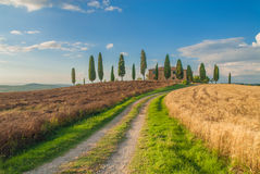 Classic Tuscan views around Pienza, Italy Royalty Free Stock Images