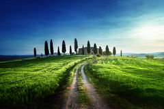 Classic Tuscan views in spring sunset time Royalty Free Stock Photos