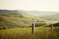 Classic Tuscan views in spring sunset time Royalty Free Stock Image