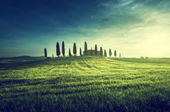Classic Tuscan views in spring sunset time,  Pienza, Italy Stock Image