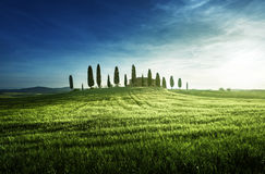 Classic Tuscan views in spring sunset time,  Pienza, Italy Royalty Free Stock Photography