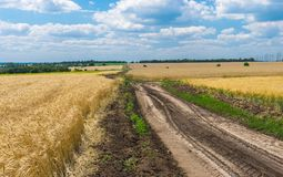 Classic Ukrainian rural landscape Stock Photography