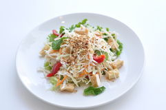 Goi. The classic Vietnamese salad. Shredded cabbage, carrot, mint with chicken or tofu and a tangy & sour dressing Stock Image