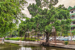 Classic view of canal in old town in Bangkok Royalty Free Stock Photos