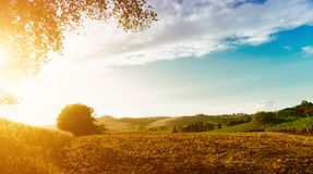Classic view of scenic Tuscany landscape royalty free stock photography