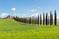 Classic View of Tuscan Farmhouse, Green Field and Cypress Tree R. Ows. Spring, blue sky royalty free stock photography