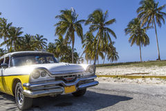 Classic vintage car. Parked under palm trees, Cuba Royalty Free Stock Photo