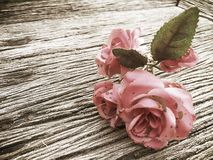 Classic vintage rose on wood table Royalty Free Stock Photos