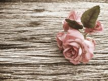 Classic vintage rose on wood table Stock Image