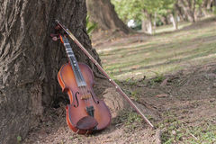 A classic violin is under tree. A violin and bow are under tree in summer season Royalty Free Stock Image