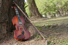 A classic violin is under tree. A violin and bow are under tree in summer season Royalty Free Stock Images