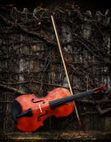 Classic Violin - Violin on Wooden Shelf with Bow Stock Photo