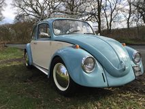 Classic Volkswagen VW Beetle royalty free stock image