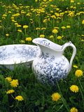 Classic wash basin and jug in meadow Stock Photo