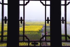 Classic Window With Rape Field View Royalty Free Stock Photos