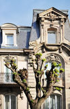 Classic windows of a luxury building facade in Paris, France. Classic windows of a luxury building facade in Paris, France Stock Photography