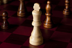 Classic Wooden Chessboard with Cheese Pieces Royalty Free Stock Image