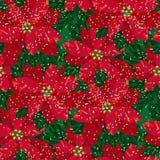 Xmas poinsettia decorative flowers seamless pattern. Classic xmas red poinsettia decorative flowers seamless pattern. Christmas floral motif for background Royalty Free Stock Photo