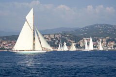 Classic yacht regatta Royalty Free Stock Photography
