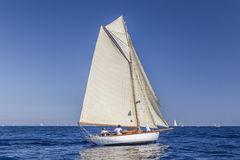 Classic Yacht Regatta - Gaff cutter STAR 1907 Royalty Free Stock Photography