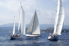 Classic yacht regatta Stock Images