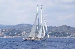 Classic yacht regatta Royalty Free Stock Image
