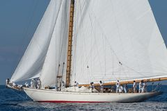 Classic yacht regatta royalty free stock photos